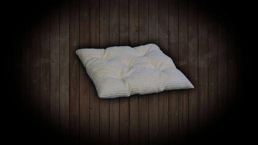 Double-faced pillow
